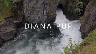 Diana Pup - Tu Ești adăpost |Official Lyric Video|