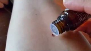 doTERRA Peppermint aliejus