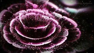 741 HZ körper detox, Zellreinigung ✿ Entfernt Toxinss ✿ reinigt die Zelle.